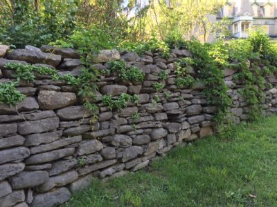 The dry-stone wall to be restored